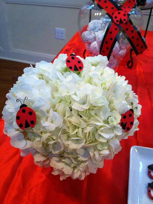 LadybugFlowers