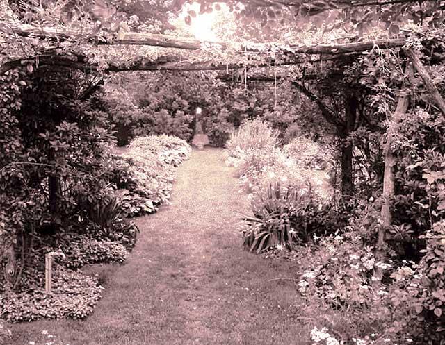 Jeanne Birdsall on Penning The Penderwicks Through the Years