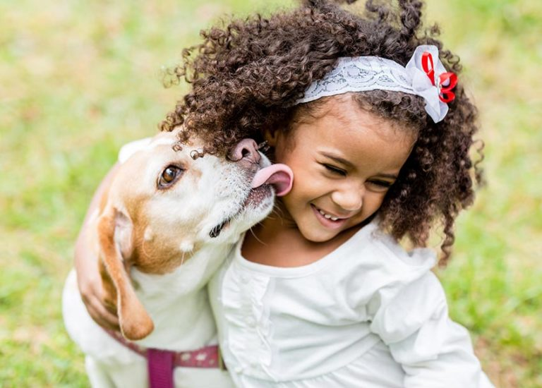 How to Pet Your Pet: 8 Books That Show Kids How to Treat Animals Thumbnail