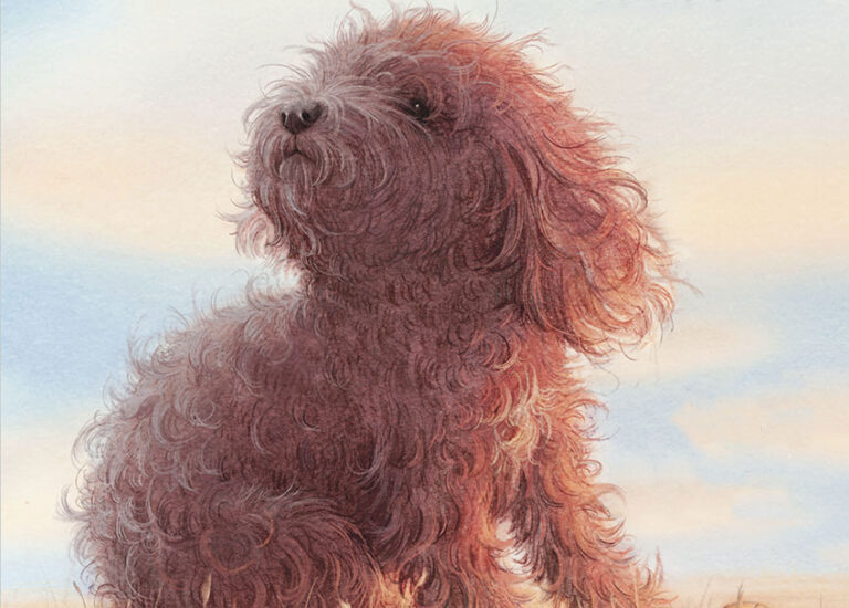 kids-books-about-dogs