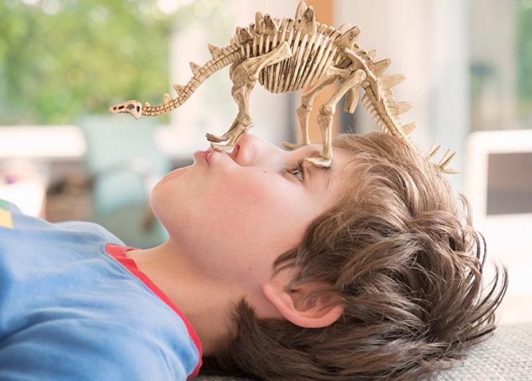 dinosaur-fossil-books