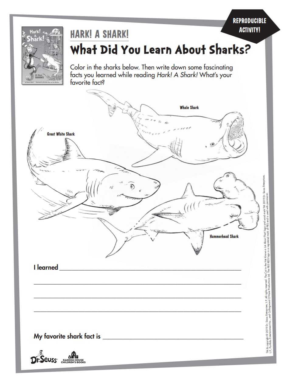 What Did You Learn About Sharks?