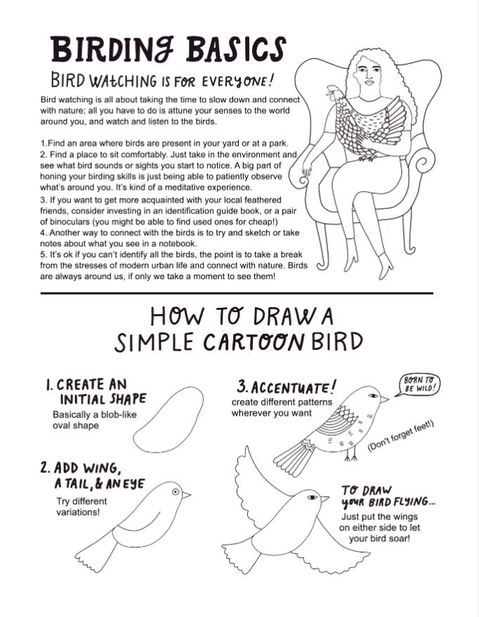 Learn the Birding Basics